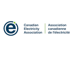 Logo Image for Association canadienne de l'électricité